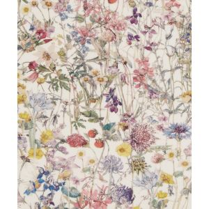 Liberty Tana Lawn Fabric Wildflowers Multi 136cm
