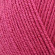 475091 -1369 Raspberry